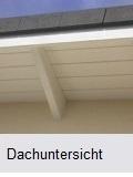 Dachuntersicht streichen