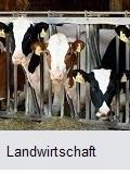 Beschichtungssysteme für die Landwirtschaft